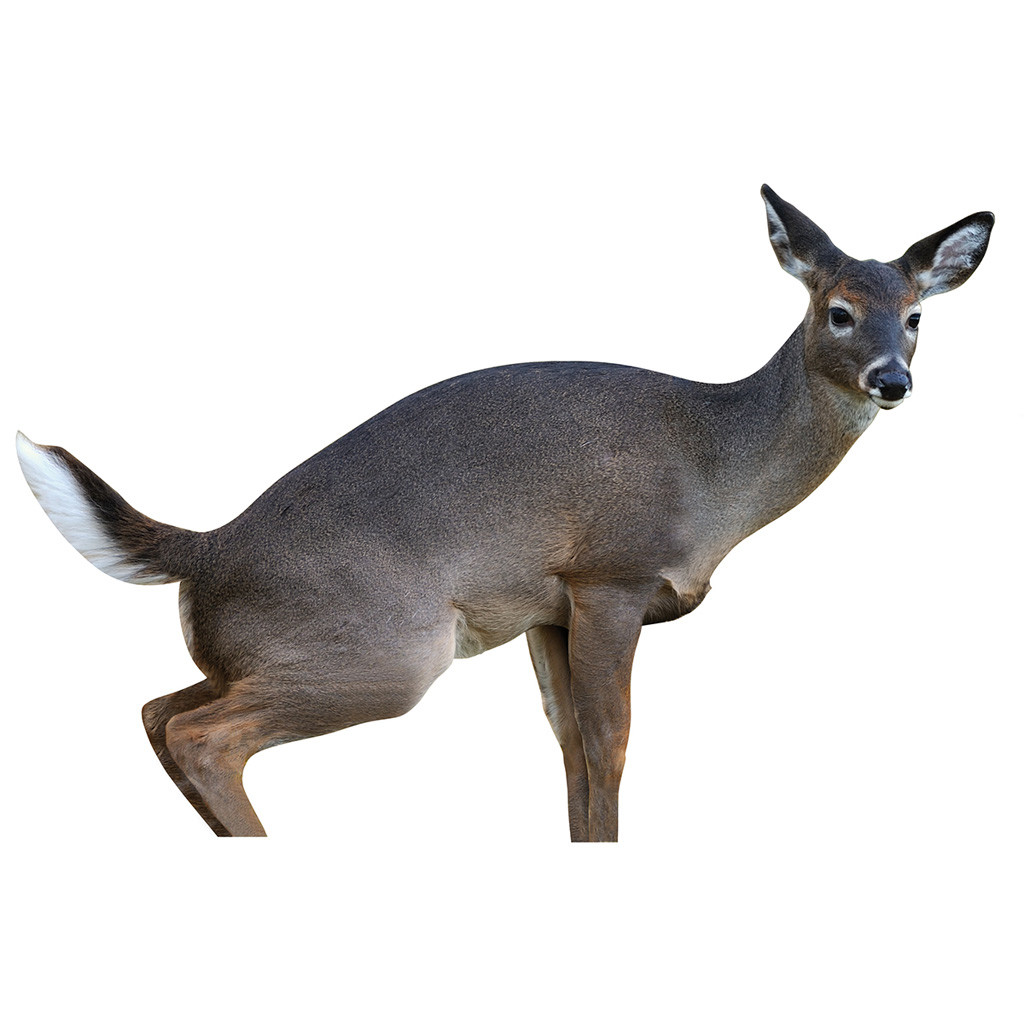 Montana Decoy Dreamteam Combo - Doe Decoy