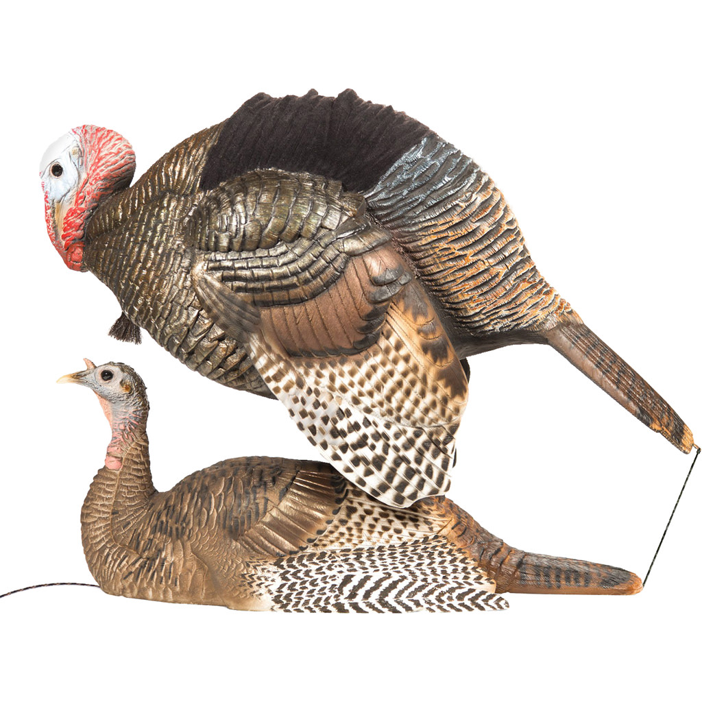 Dave Smith Turkey Decoys - Mating Motion Pair